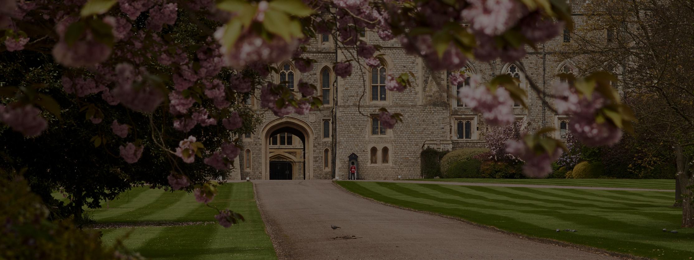 University-Report-Header.png