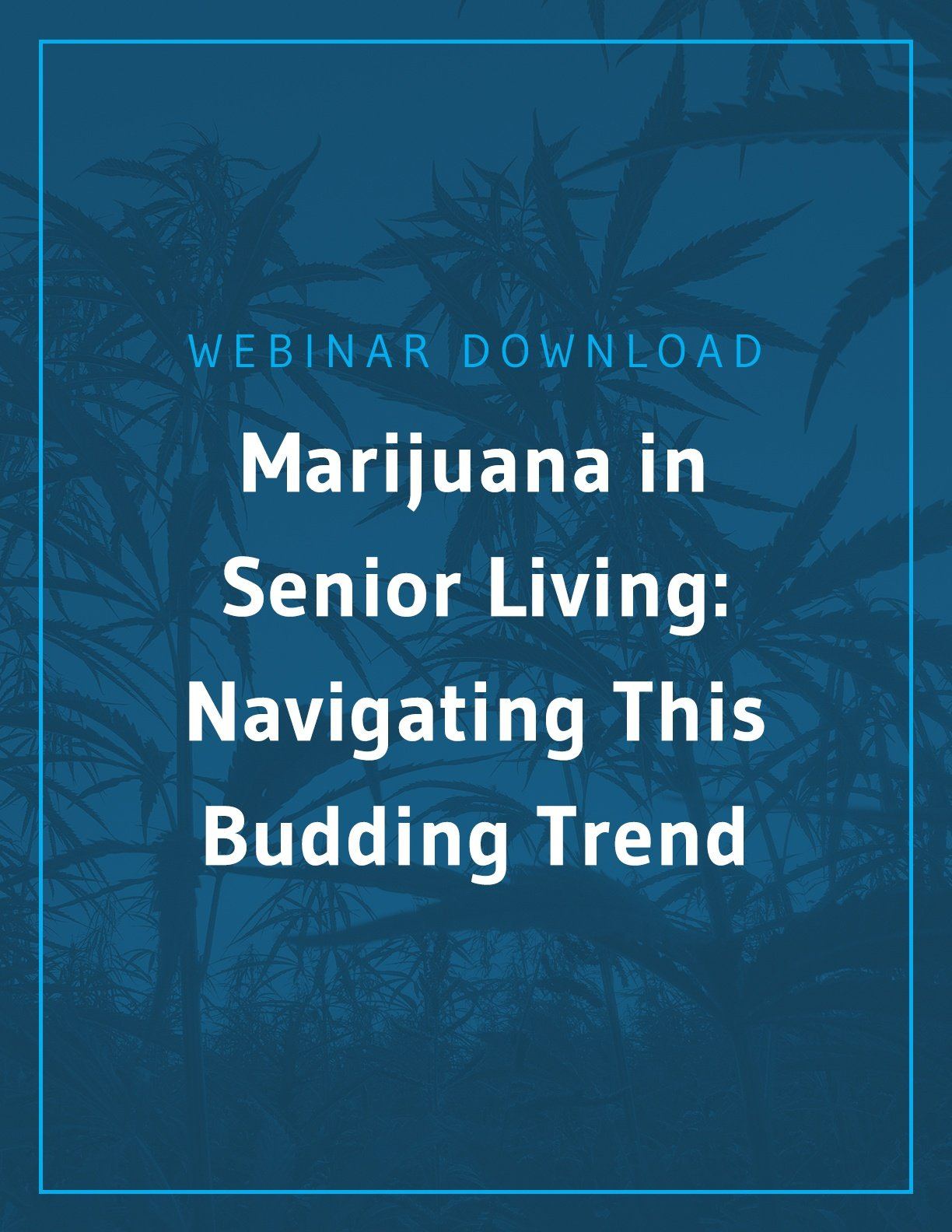 Marijuana in Senior Living: Navigating this Budding Trend